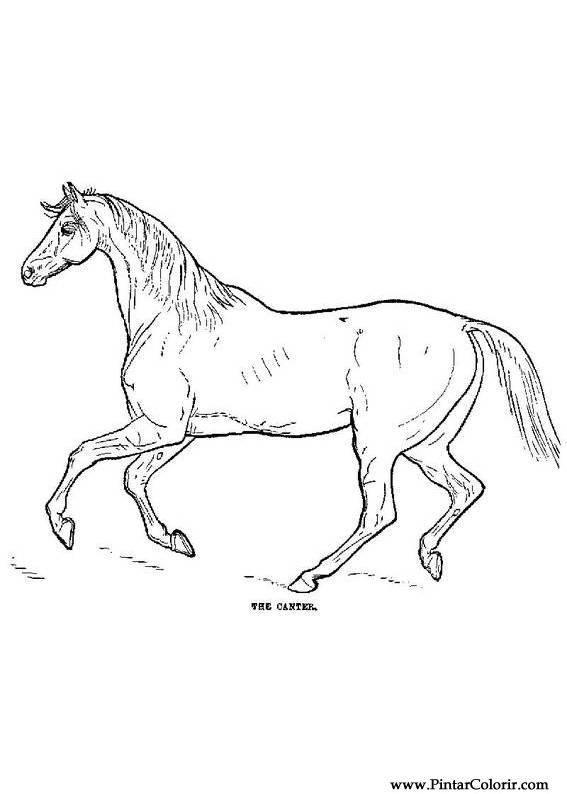 Desenhos Para Pintar E Colorir Cavalos Imprimir Desenho 001