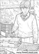 Pintar e Colorir Harry Potter - Desenho 012