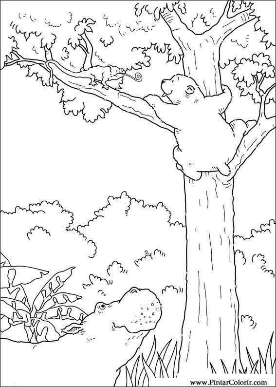 desenhos para pintar e colorir o ursinho polar imprimir desenho 047