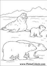 Pintar e Colorir O Ursinho Polar - Desenho 031
