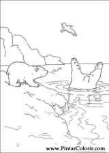 Pintar e Colorir O Ursinho Polar - Desenho 036