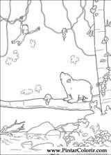 Pintar e Colorir O Ursinho Polar - Desenho 050