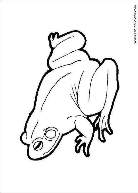 çizimler Boya Ve Renk Kurbağa Için Baskı Tasarım 009